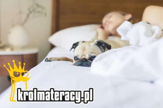 Król Materacy - Sklep Internetowy
